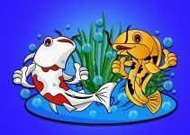 Two Fish In Pond Aeration Water Bubbles